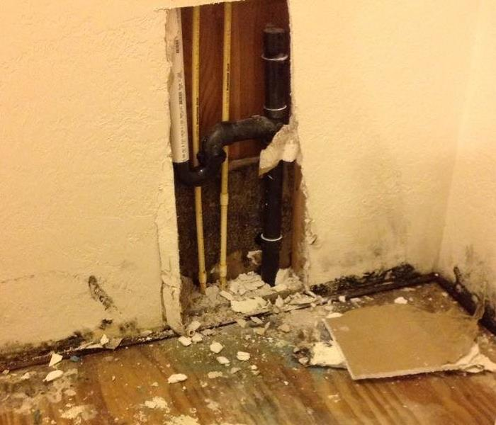 Closet with Mold Remediation in Fort Worth, TX Before