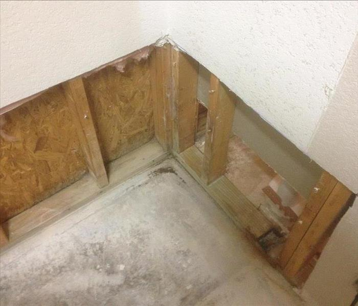 Mold Growth in bathroom of Saginaw, TX home After