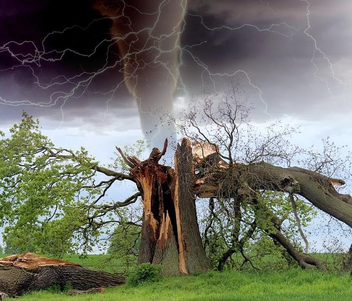 Storm Damage Storm Damage Preparedness Tips from Restoration Experts for Fort Worth, Saginaw and Haslet